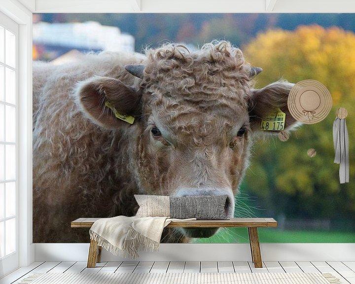 Beispiel fototapete: Cow is watching You von Dennis Meißner