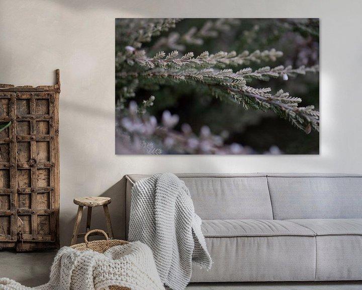 Impression: Fleur de bruyère sur Julien Willems Ettori
