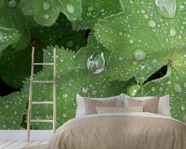 Impression: Raindrop sur Julien Willems Ettori