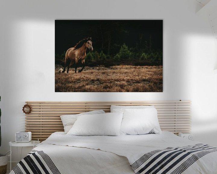 Sfeerimpressie: Wilde paard van Michelle LaSanto