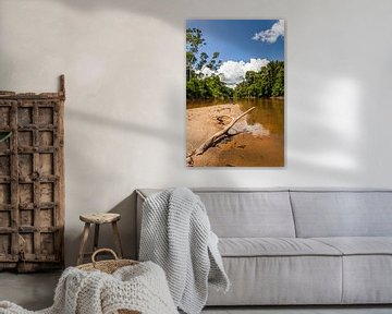 Zicht op de Suriname rivier, Suriname van Marcel Bakker