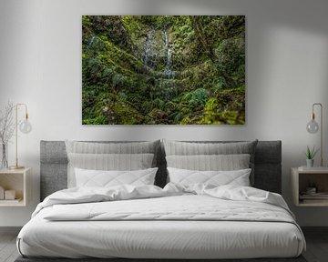 Groen paradijs van Friedhelm Peters