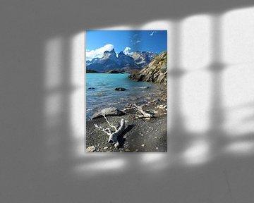 Torres del Paine Nationalpark in Chile mit azurblauem Wasser und Ästen im Vordergrund von A. Hendriks