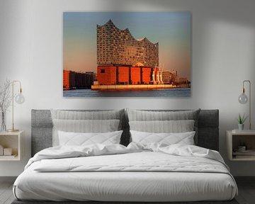 Elbphilharmonie bei Sonnenuntergang, Hamburg von Markus Lange