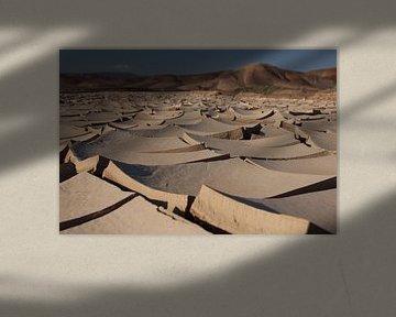 Gespleten aardkorst, Nationaal Park Pan de Azúcar, Chili van A. Hendriks