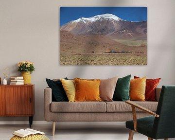 Trein, Salar de Ascotán, Vulkaan, Chili van A. Hendriks