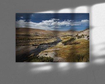 Riverstroompje, Altiplano, Bolivia van A. Hendriks