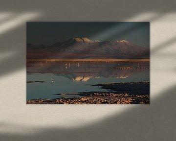 Weerspiegeling van bergtoppen van de Andes in een met water bedekt zoutmeer in Chili van A. Hendriks