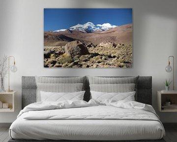 Altiplano Bolivia met zicht op bergtoppen van de Andes van A. Hendriks
