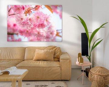 Roze bloesem van Elles Rijsdijk