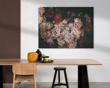 Dunkle Rosen von Marina de Wit