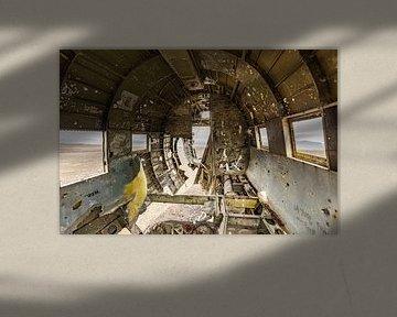 Solheimasandur vliegtuigwrak van Easycopters