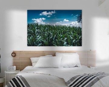 Het maïsveld van je dromen van Michelle de Villiers