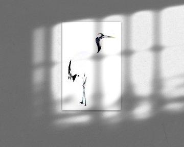 Chinese kraanvogel, hoog contrast van Sven Scraeyen