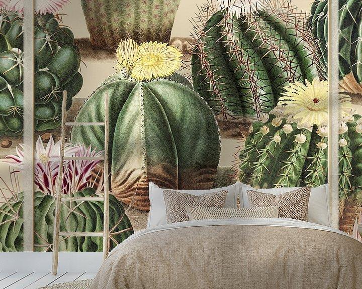 Sfeerimpressie behang: Le Collage de Cactus Vintage van Marja van den Hurk