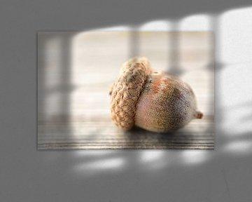 Eine Eichel auf einem Holztisch von Ulrike Leone