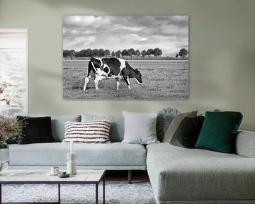schwarz-weiße Kuh auf einer Wiese grasend von Tony Vingerhoets