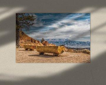 Grand Canyon Arizona sur Annette van Dijk-Leek
