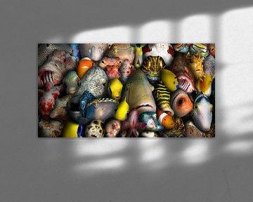 vis portretten van Dray van Beeck