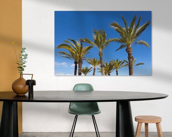 Impression: Les palmiers sur Frank Herrmann