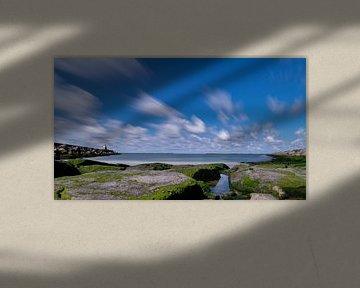 Noord hollandse pieren van Arno van der Poel