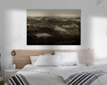 Early Morning van Peter Laarakker