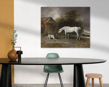 Der Hund und das Pferd, Ben Marshall
