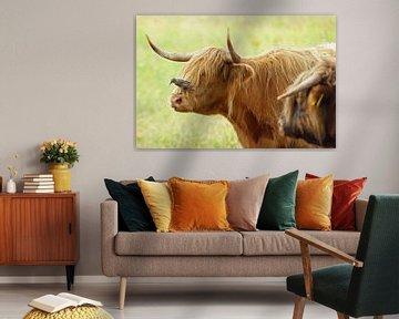 vogel en koe von Dirk van Egmond