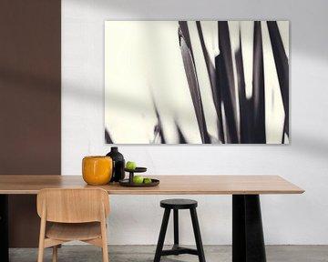 Schwarz-Weiß-Natur von Annick Woldring