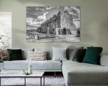 De Middeleeuwse ruïne van Ardfert  Cathedral, County Kerry,  Munster, Ierland van Mieneke Andeweg-van Rijn