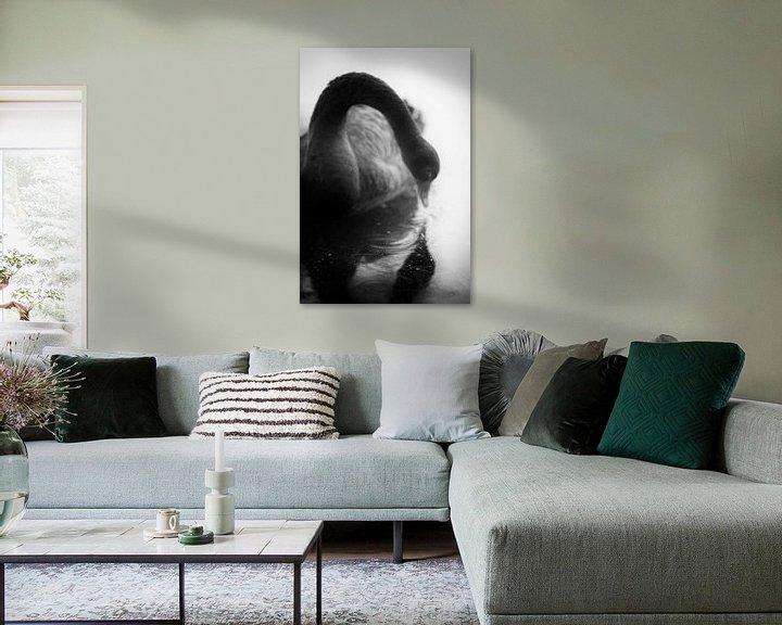 Sfeerimpressie: Een zwarte zwaan die in de spiegel van het water kijkt, een sprookje in zwart-wit beeld van John Quendag