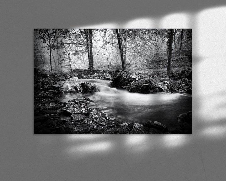 Impression: Ruisseau dans la forêt de Ninglinspo sur Jacqueline Lemmens