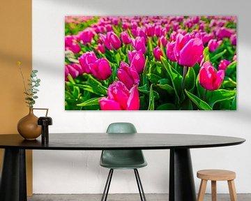 Tulipes violettes sur Wouter van Woensel
