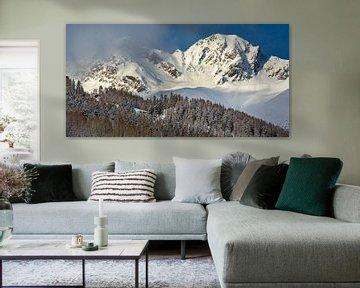 Panaroma in den Bergen von Wouter van Woensel