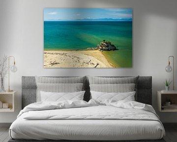 Tropisch strand met de zee bij Abel Tasman, Nieuw-Zeeland van Paul van Putten