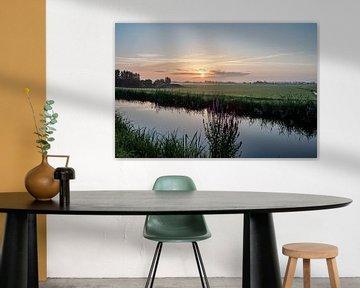 Nederlands landschap zonsondergang zonsopgang weiland bloemen van Déwy de Wit