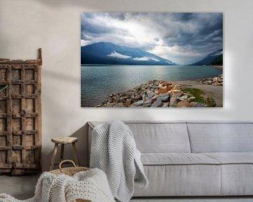Moose Lake bij Mount Robson van Vivo Fotografie