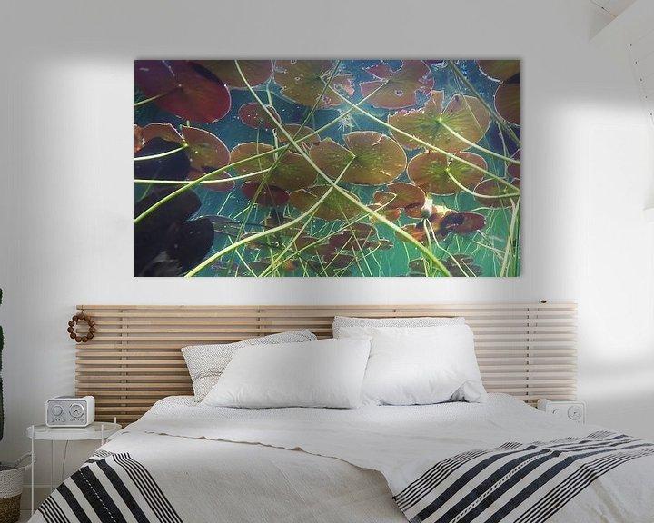 Sfeerimpressie: Waterlelies van Trudy van der Werf
