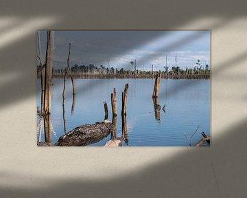 Fraai meer in Laos, Thakhek Loop van Anne Zwagers