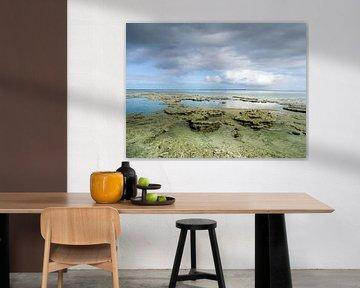 Trockenes friesisches Wattenmeer in der Nähe des Meereslochs