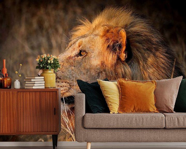 Sfeerimpressie behang: Leeuwen in het wild in Zuid-Afrika van W. Woyke