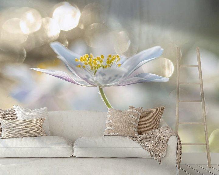 Sfeerimpressie behang: Bosanemoon met bokeh, foto 4 van Caroline van der Vecht