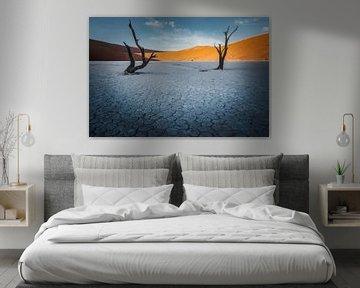 Geplaveide woestijn van Joris Pannemans - Loris Photography