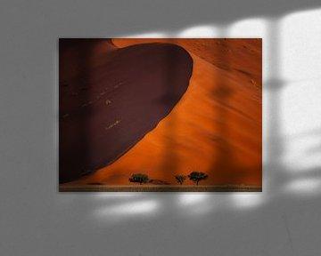 Leven op de rand van een duin van Joris Pannemans - Loris Photography