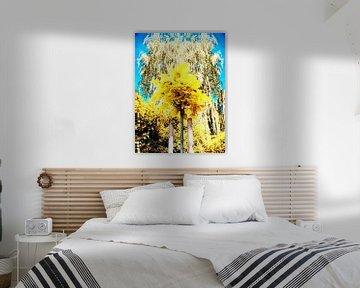 Den Wald durch die Bäume sehen. von Pieter van Roijen