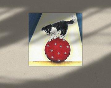 Sendie im Zirkus von Rianne Brugmans van Breugel