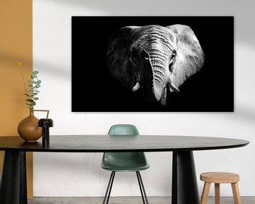 Afrikanischer Elefant von Mark Zanderink