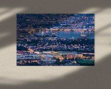Zürich en het meer van Zürich in Zwitserland van Werner Dieterich