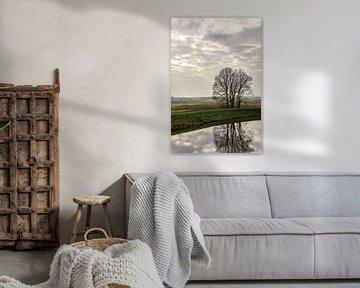 Reflectie in de gracht 2 van Joost Potma