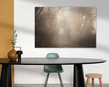 Mystieke mist bij het water van Tobias Luxberg